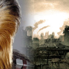 Peter Mayhew set to Appear in Knoxville!